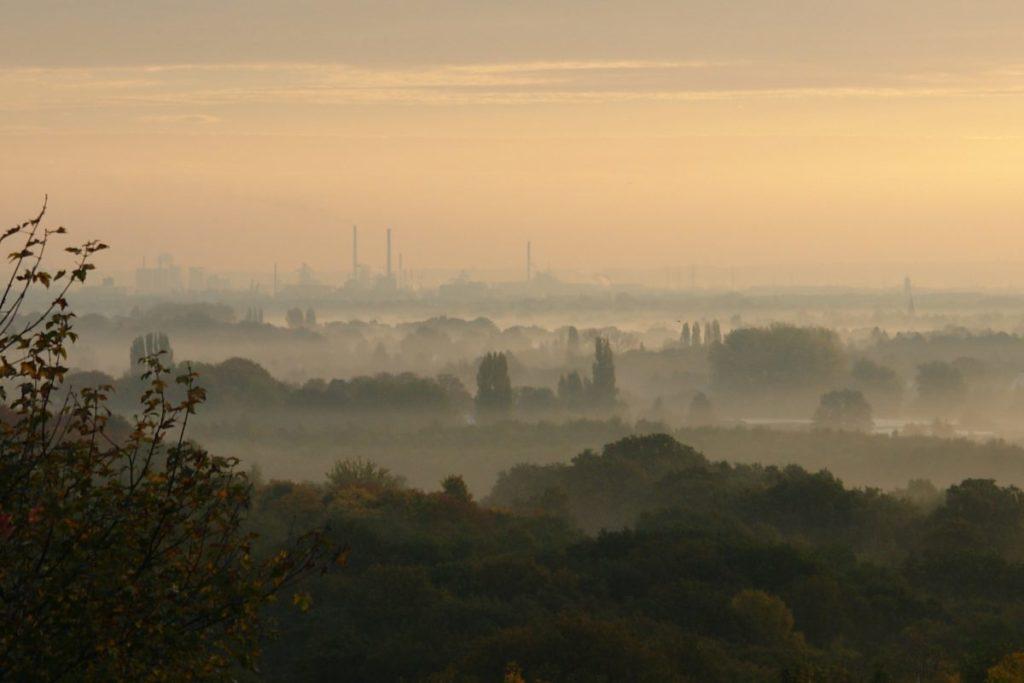 mgła o poranku nad miastem